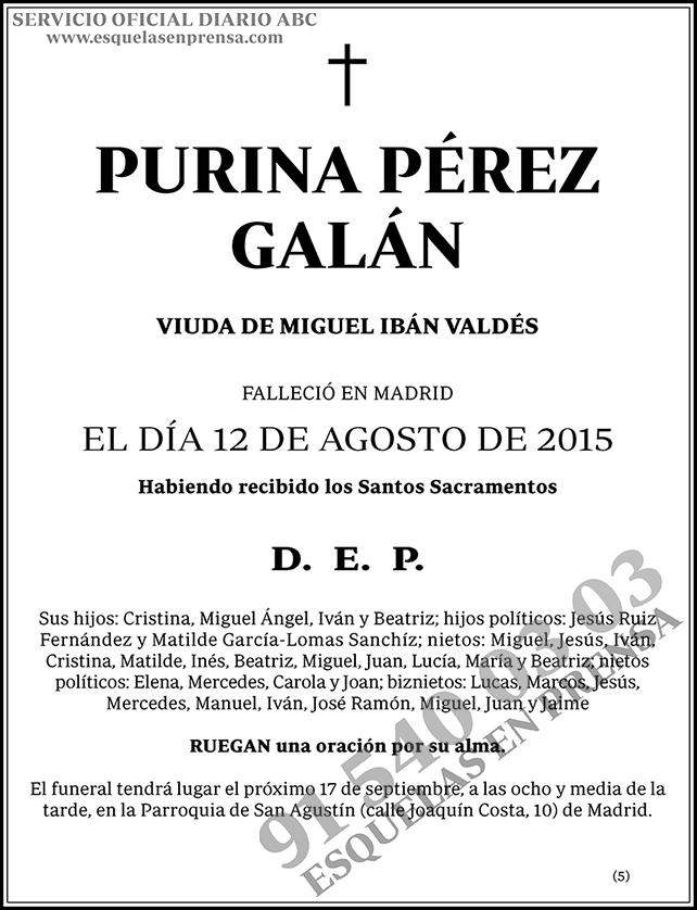 Purina Pérez Galán